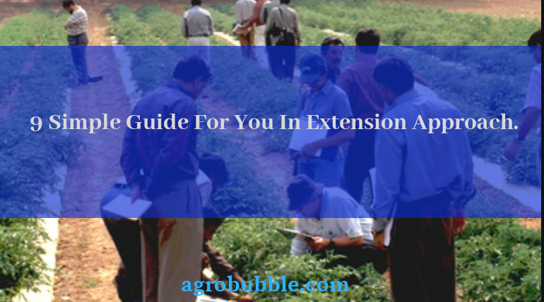 Extension Approach
